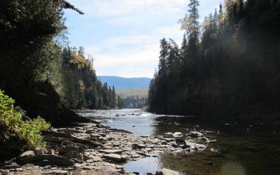 Qu'est-ce qu'un organisme de bassin versant?