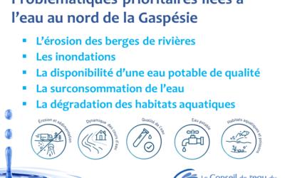Cinq problématiques prioritaires liées à l'eau, ses usages et ses écosystèmes au nord de la Gaspésie